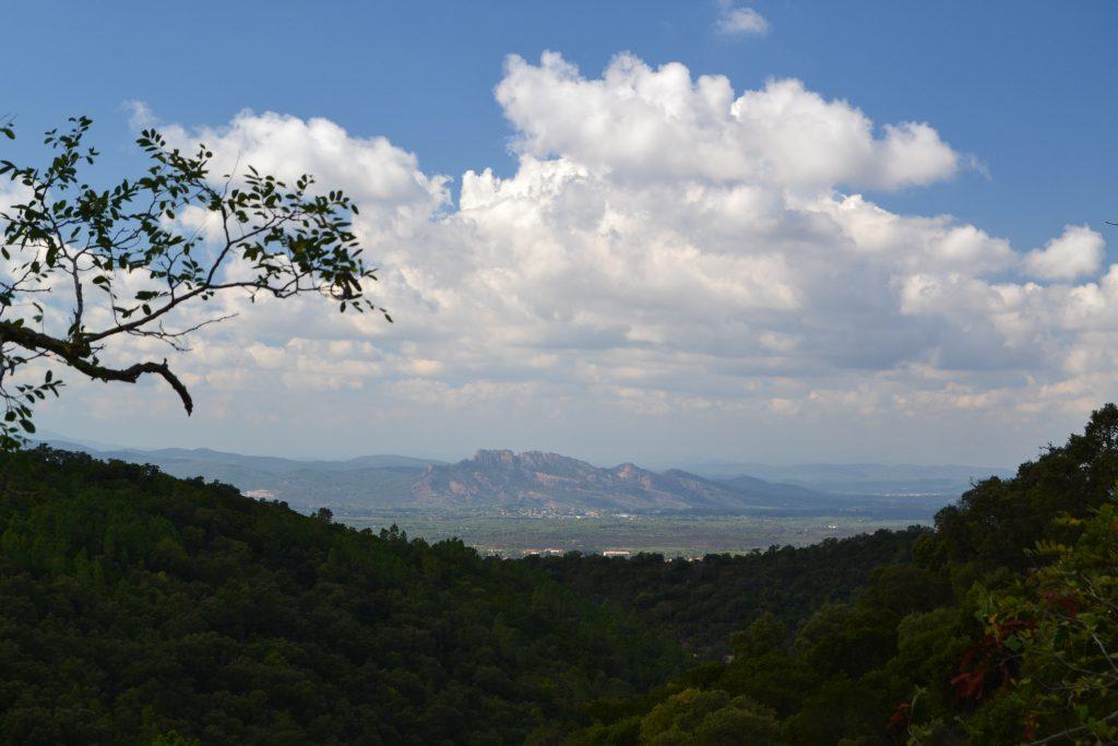 Rocher de Roquebrune, der er indrammet af træerne