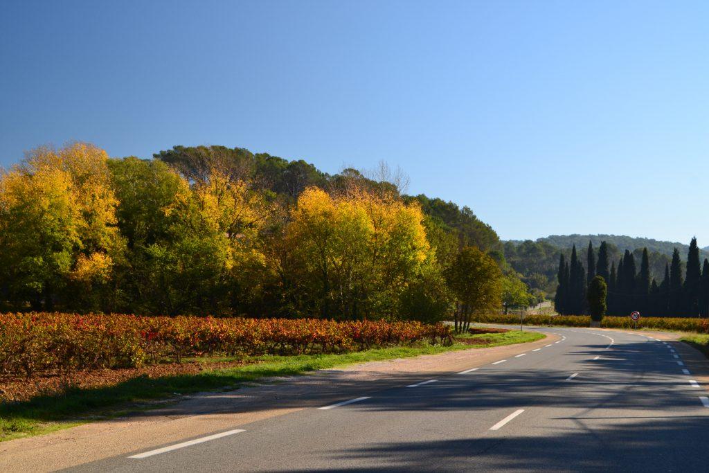Lidt mere efterårsstemning