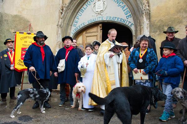 Hundene velsines af byens præst, inden de skal ud og konkurrere